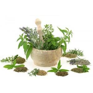 Препараты из лекарственных трав
