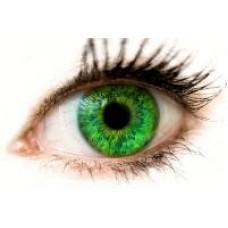 Уроки здоровья. Сохраняем остроту зрения.